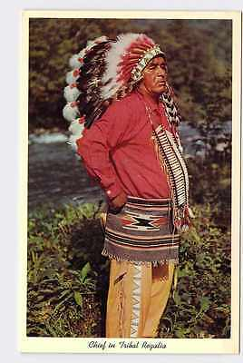 Vintage Postcard North American Native American Chief In Tribal Regalia