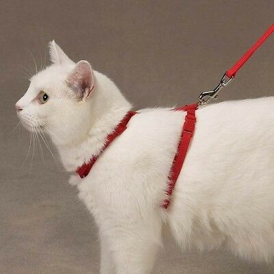 CAT HARNESS by Savvy Tabby - RED