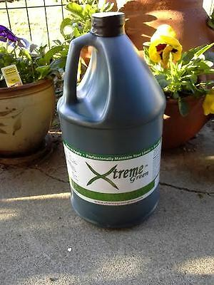 One Gallon Green Grass Dye Eco Friendly Pet Safe Lawn Paint Free Shipping