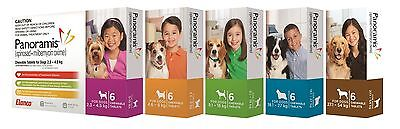 Panoramis for Dogs Kills Fleas Worming Heartworm - All Sizes Available