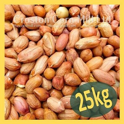 25kg *Premium Grade* Peanuts for Wild Birds -  Groundnut Kernels Bird Food Nuts