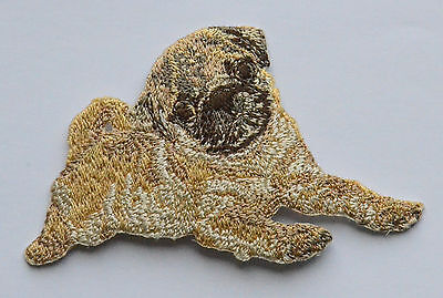 Pug Embroidered Motif Iron/Sew On Patch Badge Dog Embroidery