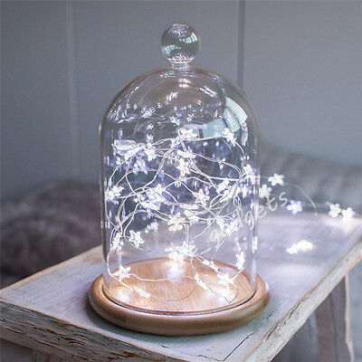 20 Micro LED Star Battery Operated Silver Wire Indoor/Outdoor Fairy Lights Xmas