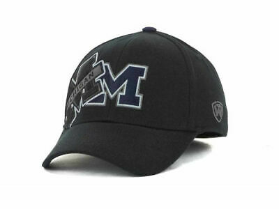 separation shoes 89d46 8f0ac Michigan Wolverines Top of the World Clutch Flex Fit NCAA Cap Hat