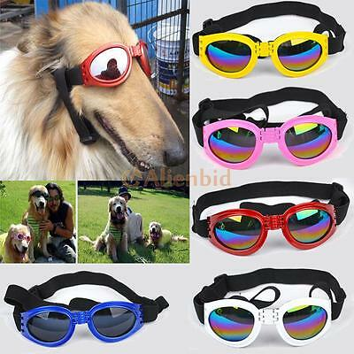 Fashion Pet Eye Protection Sunglasses Waterproof for Dog Puppy Multicolor