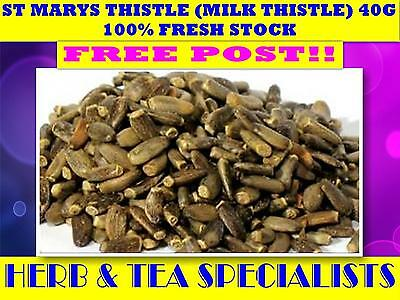 ST MARYS THISTLE (Milk Thistle)  40G TEA ☆100% FRESH Silybum marianum☆ FREE POST