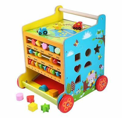 Baby and Toddler Learning & Teaching 6 In 1 Activity Cube Walker Blackboard Toy