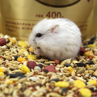 New Freeshipping Hamster pet food Comprehensive nutrition Special pure grain400G
