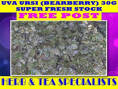 UVA URSI (BEARBERRY) 30G TEA☆Arctostaphylos uva-ursi☆DRIED HERB HERBAL☆FREE POST