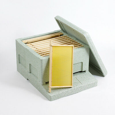 Basic Poly National Hive with frames