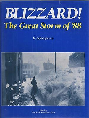 Blizzard Of 1888 The Spirit Of Service Plate Signed By Vp Customer
