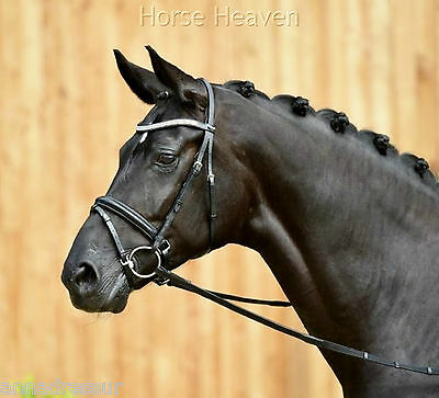 Busse Comfort Crank Flash Snaffle Bridle Soft-Touch Headpiece Clincher Browband