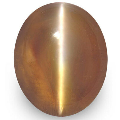 2.97-Carat Ceylonese Honey-Colour Chrysoberyl Cat's Eye with Strong Chatoyance