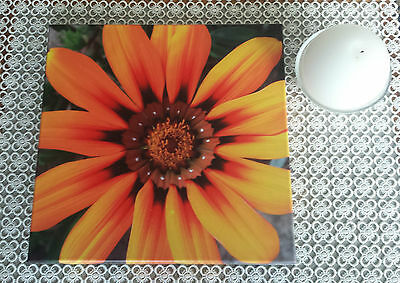 Beautiful Sunflower Canvas Print Framed and Ready to Hang!
