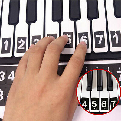 Piano Keyboard Music Musical Note Lesson Key Decal For Beginners Learn Sticks