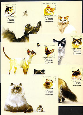 2006 Cats,Butterfly,Mouse,Bird,Turkish,Siamese,Gattos,Romania,6022= 6 Maxi cards