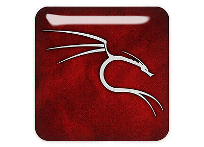 "Backtrack Linux Red Dragon 1""x1"" Chrome Domed Case Badge / Sticker Logo"