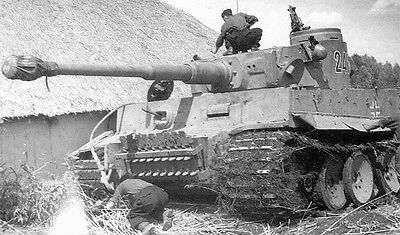 WWII B&W Photo German Troops and Tiger Tank in Kursk  / 4086  NEW