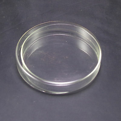 Petri dishes with lids clear glass 75mm new x2
