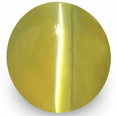 1.70-Carat Ceylonese Chrysoberyl Cat's Eye with Very Strong Chatoyance