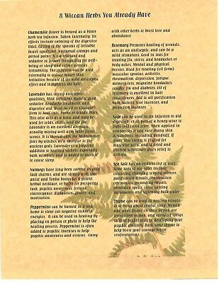 Book of Shadows Spell Pages ** 8 Wiccan Herbs ** Wicca Witchcraft BOS