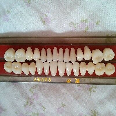 Alloy Pin Porcelain Tooth Dental Materials Colors Shade GuGSE Teeth GSE