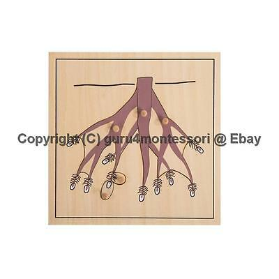 NEW Montessori Botany Material- Wooden Root Puzzle