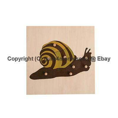 NEW Montessori Biology Material - Parts of a Snail Puzzle