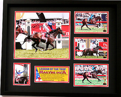 New Makybe Diva Glen Boss Signed Limited Edition Memorabilia Framed