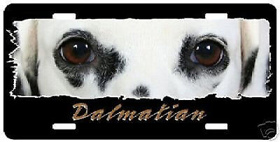 "Dalmatian     black&white  ""The Eyes Have It"" License Plate"