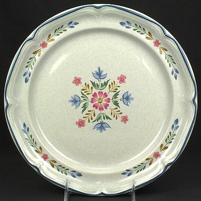 International Heritage Dinner Plate  BASE STAINS