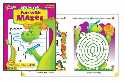 Fun with Mazes Book Wipe Off Educational Activity Book