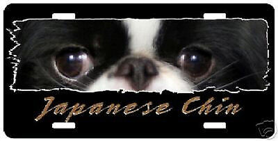 "Japanese Chin "" The Eyes Have It ""  License  Plate"