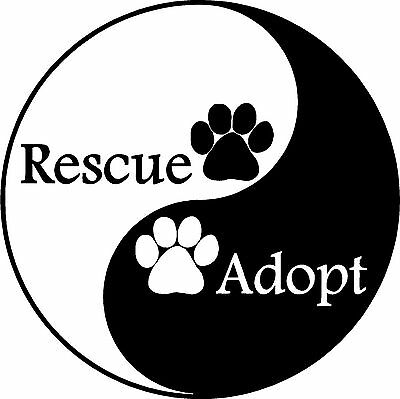 """Rescue kissed L868 8/"""" shelter dog adopt window decal sticker"""
