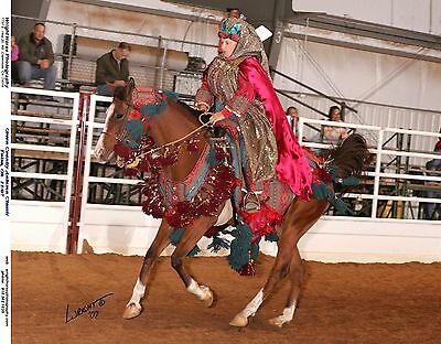 Arabian Native Costume For Shows And Parades