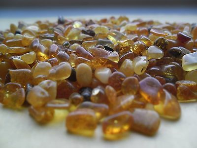 Small Pieces Genuine Baltic Amber Stones 50 gr Natural