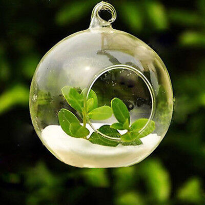 1Pcs Clear Hanging Glass Baubles Ball Candle Tealight Holder Wedding Decor