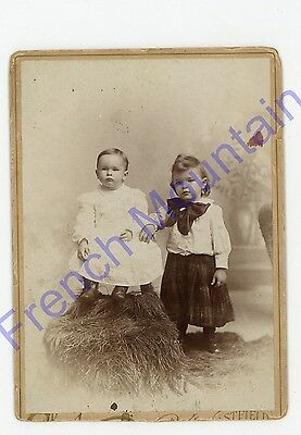C1900 Cabinet Card Photo, Very Cute Little Girl & Baby 63
