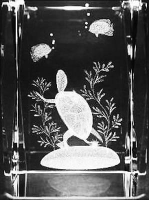 3D TURTLE AND FISH #2 3 Inch GLASS PAPERWEIGHT Laser Etched Crystal Cube