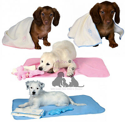 Puppy Set Blanket Toy & Towel Pink Or Blue - Ideal Breeders Whelping Puppy Pack