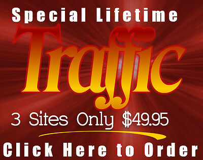 Unlimited Lifetime Website Traffic for 3 Websites only $49.95