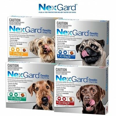 Nexgard Flea & Tick Treatment Chew for Dogs - 6 Pack