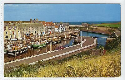 THE HARBOUR, EYEMOUTH: Berwickshire postcard (C13597)