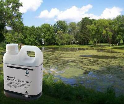 Aquatic Barley Straw Extract 1lt - For Algae in ponds & water features