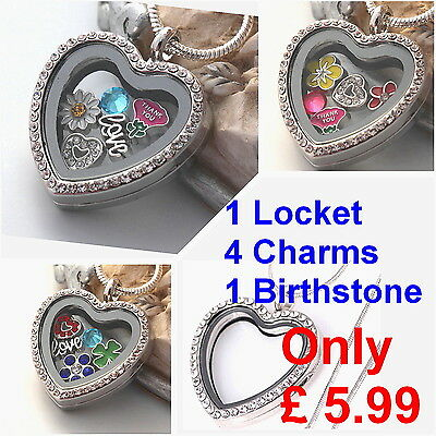 Heart Memory Locket Necklace/ Keyring + Floating Charms Living Pendant Chain...