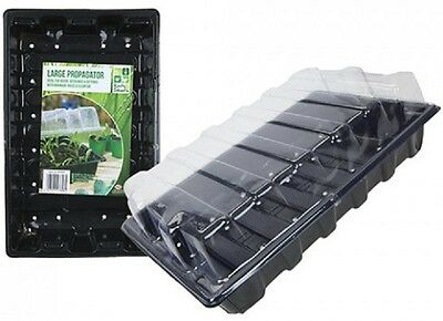 Wholesale-Resellers-12 X LARGE SIZE PROPAGATOR  WITH LID