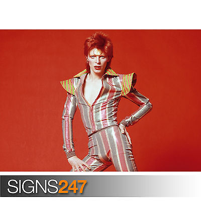 DAVID BOWIE ZIGGY STARDUST POSE (1138) Picture Poster Print Art A0 A1 A2 A3 A4