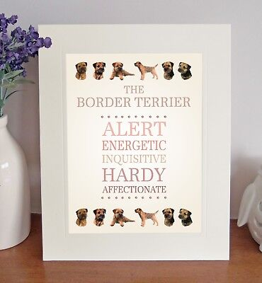 """Border Terrier 10"""" x 8"""" Mounted Breed Traits Print Picture Dog Pet Lovely Gift"""