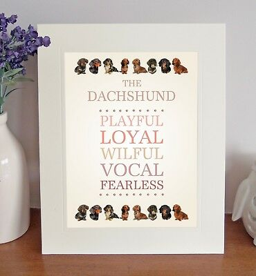 Dachshund 8 x 10 Free Standing BREED TRAITS Picture 10x8 Dog Print Lovely Gift