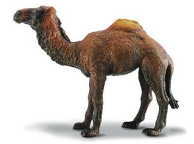 CollectA 88208 Dromedary Camel - Realistic Wild Animal Model Toy - NIP